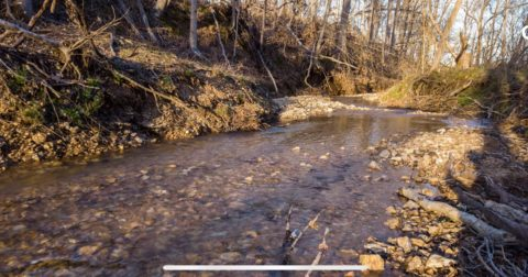 Land for Sale West TN